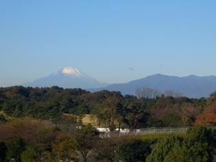20011.11.25富士山.jpg